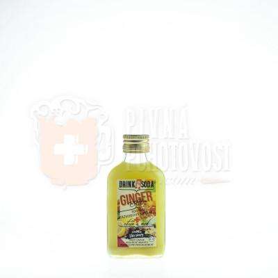 Ginger Shot 100% zázvorový extrakt citrón a med 0,1l